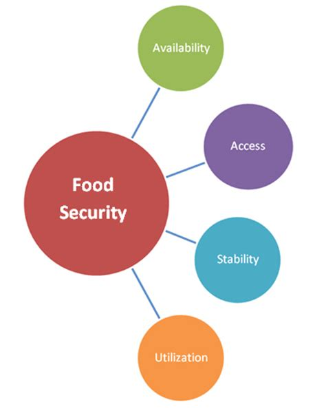 Essay about Food Security in the Developed and the